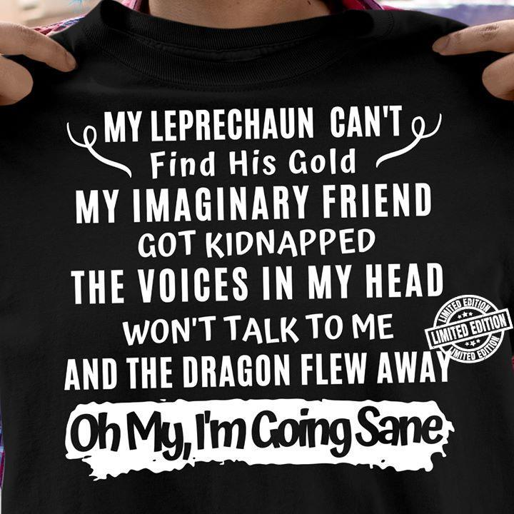 My leprechau can't find his gold my imaginary friend got kindnapped the voice in my head shirt